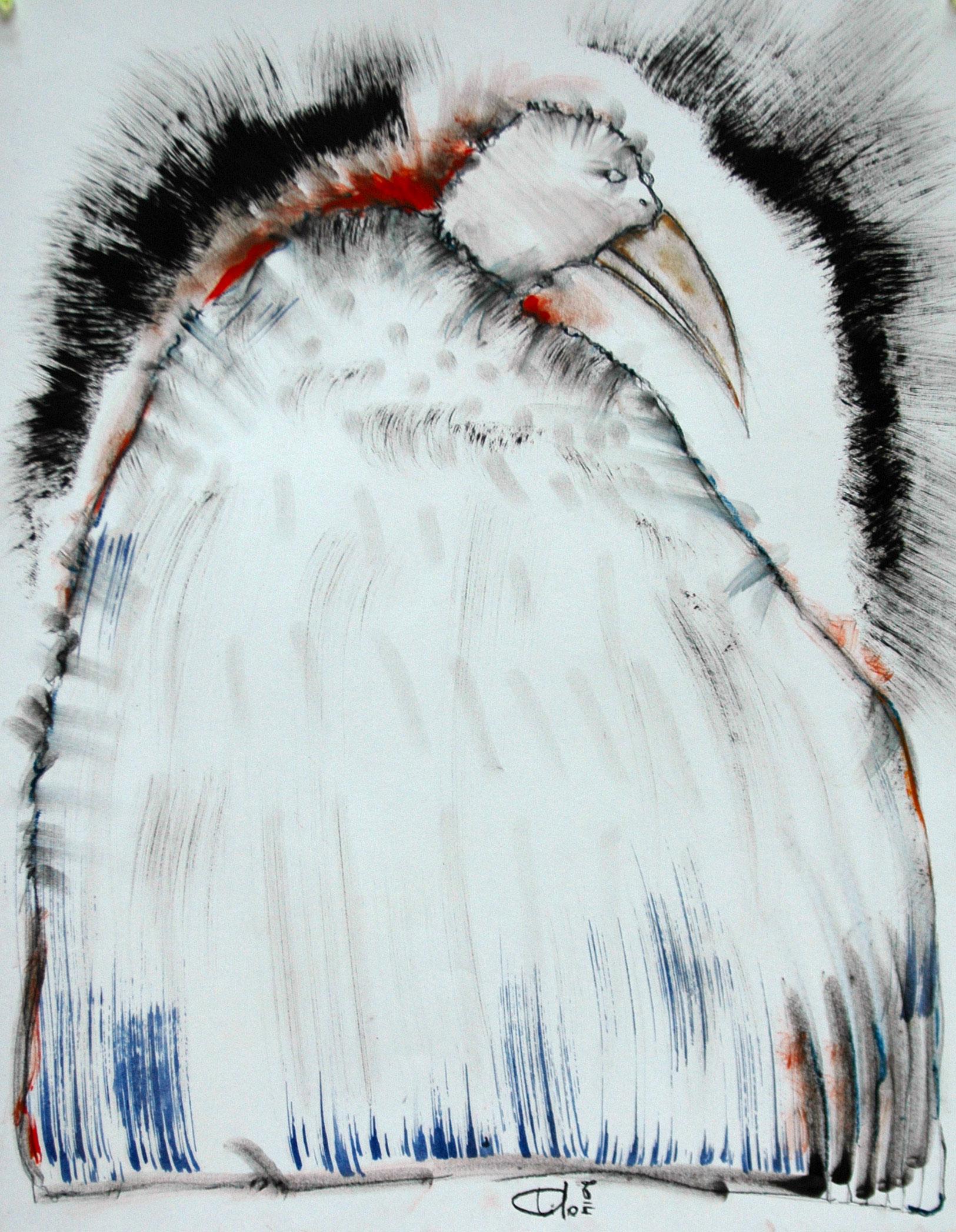 Tilo - L'homme oiseau